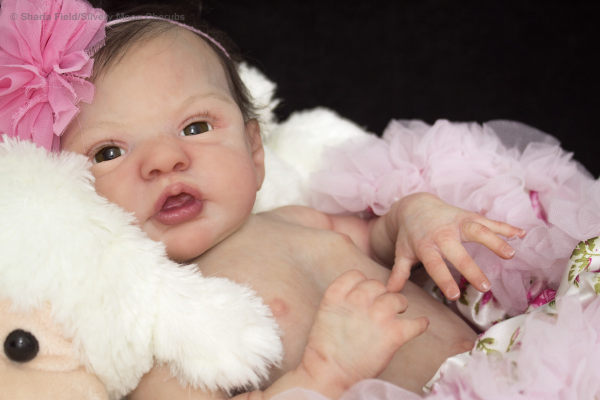 Reborn Baby Girl Esme.  Reborn from the Esme sculpt by Laura Lee Eagles by Sharla Field of Silver Moon Cherubs