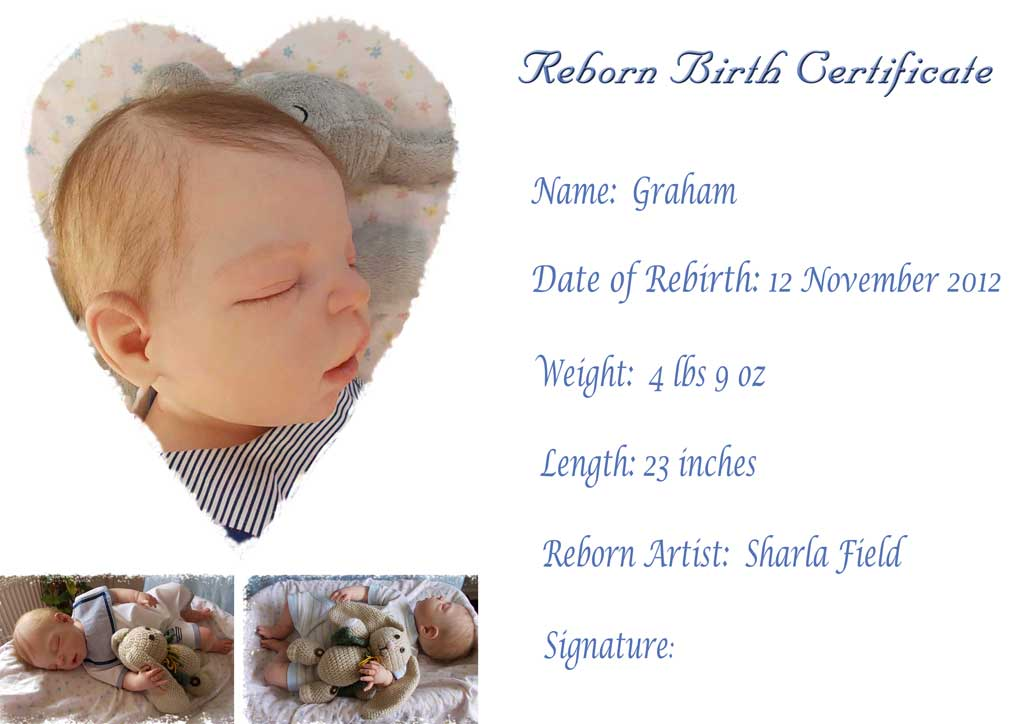 Reborn Birth Certificate For Graham. Reborn By Sharla Field Of Silvery Moon  Cherubs From The
